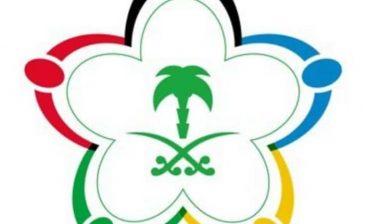 هيئة الرياضة تؤجل مؤتمر دعم الأندية الرياضية