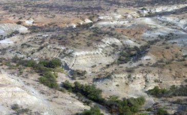 التغيرات البيئية أثرت على تطور الإنسان منذ العصر الحجري