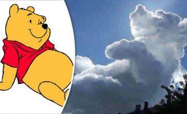 """""""السحابة الدب"""" تخطف أنظار العالم!"""