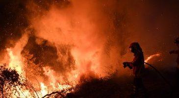 استراليا تحذر المواطنين من حرائق الغابات المستعرة بالبلاد