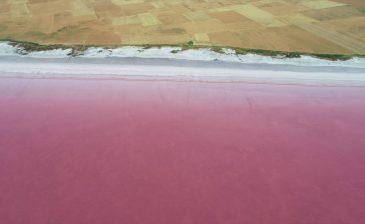 ظاهرة طبيعية تزيّن بحيرة الملح التركية بالأحمر والأزرق