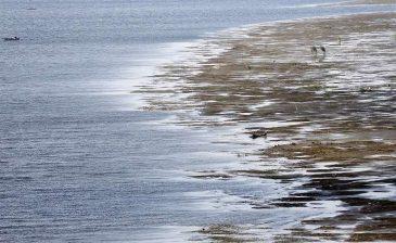 """مصر تكشف عن """"خطة 2037"""" لمواجهة عجز المياه وسد النهضة"""