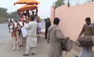 عربات الخيول تعود لحفلات الأعراس بباكستان