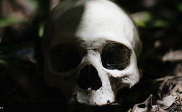 جمجمة رضيعة تفسر كيف وصل البشر للأميركيتين