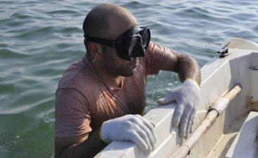 البحرين توفر للزوار تجربة الغوص بحثا عن كنوز ما تحت الماء