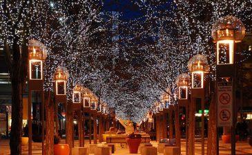 استبدال الأشجار المضيئة بالمصابيح في الشوارع صار قريبًا