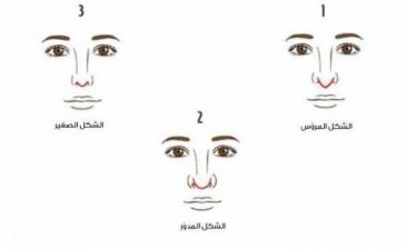 ما الذي يكشفه شكل رأس أنفك عن شخصيتك